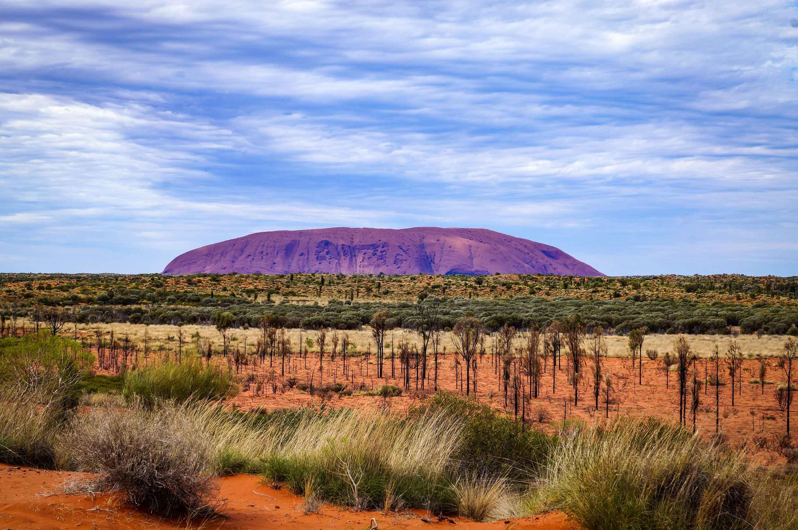 Im Outback: Anschieben, Ausharren, Abwandern